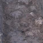 fragment bruku (prawdopodobnie)